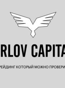 Orlov Capital международный брокер