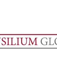 Компания Consilium Global