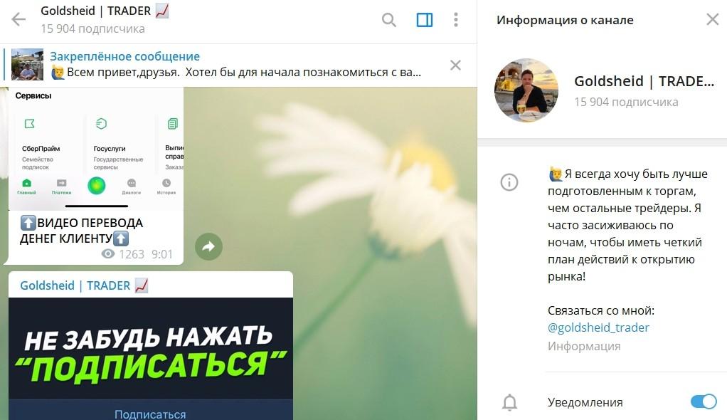 Информация о канале Грегори Голдшейд