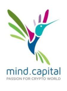 Логотип Mind Capital