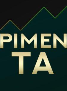 Pimen. Technical analysis Пименова Михаила