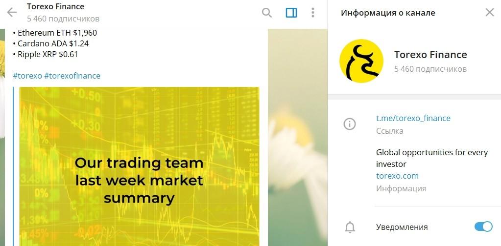 Телеграм канал Torexo Finance