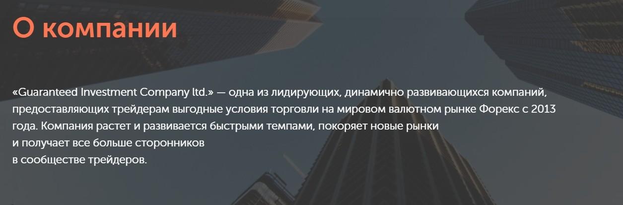 Компания Ginvestco.com