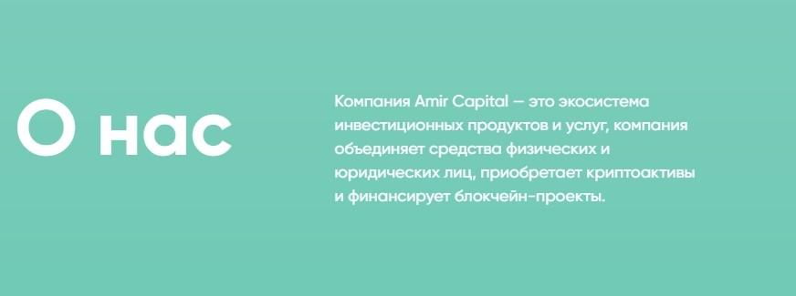 О компании Amir Capital