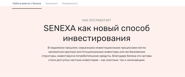 Сайт компании Seneca.biz